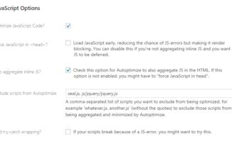 Autoptimize Optimize Javascript Code