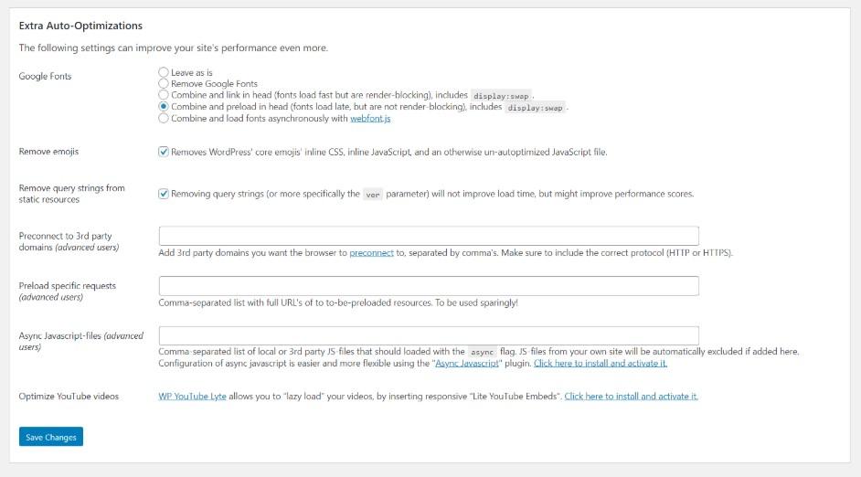 Google Font Settings Autoptimize