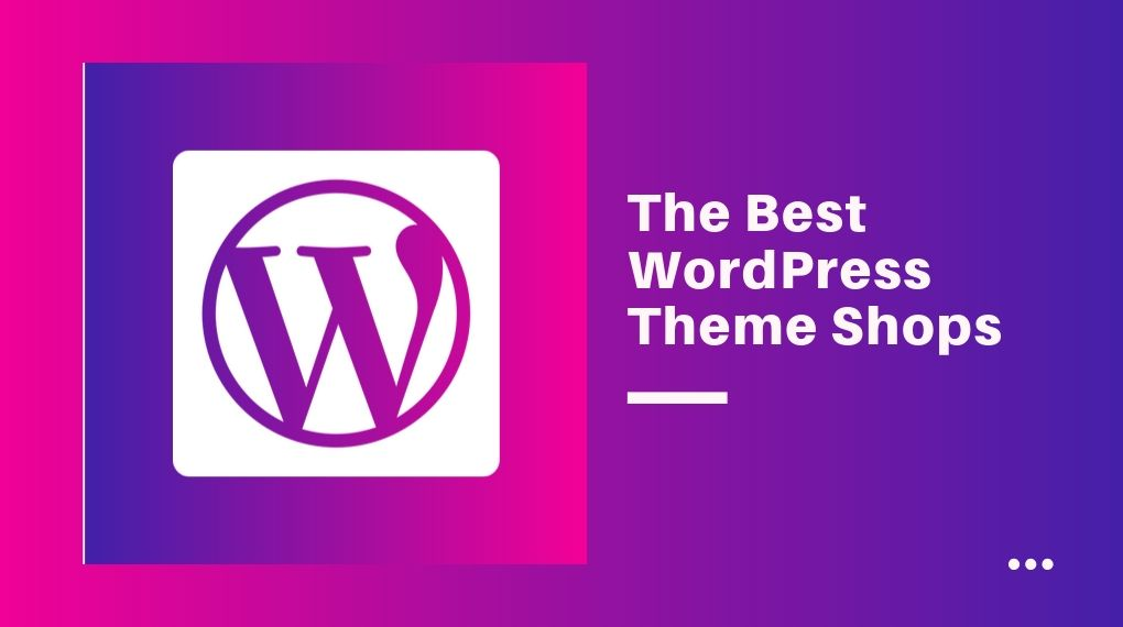 Best WordPress Theme Providers